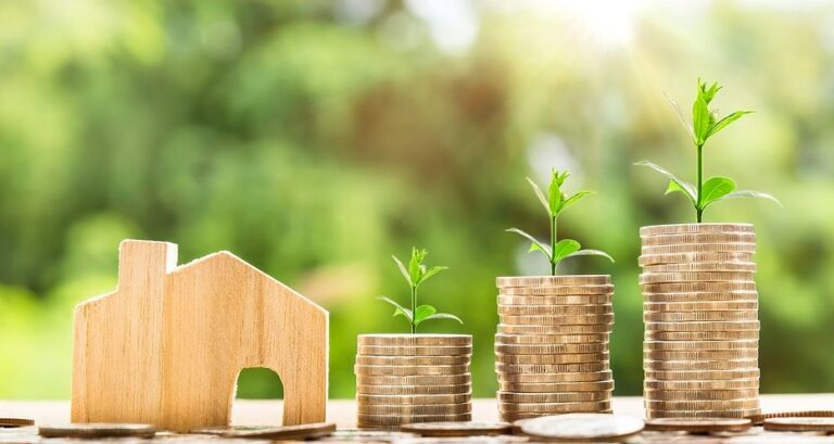 Renta Basica Universal De Emergencias