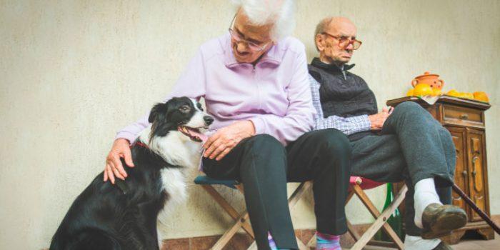 beneficios adultos mayores